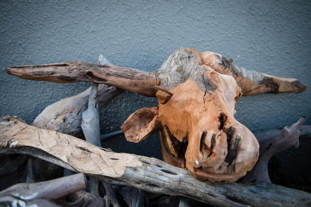 A partially formed wooden head.