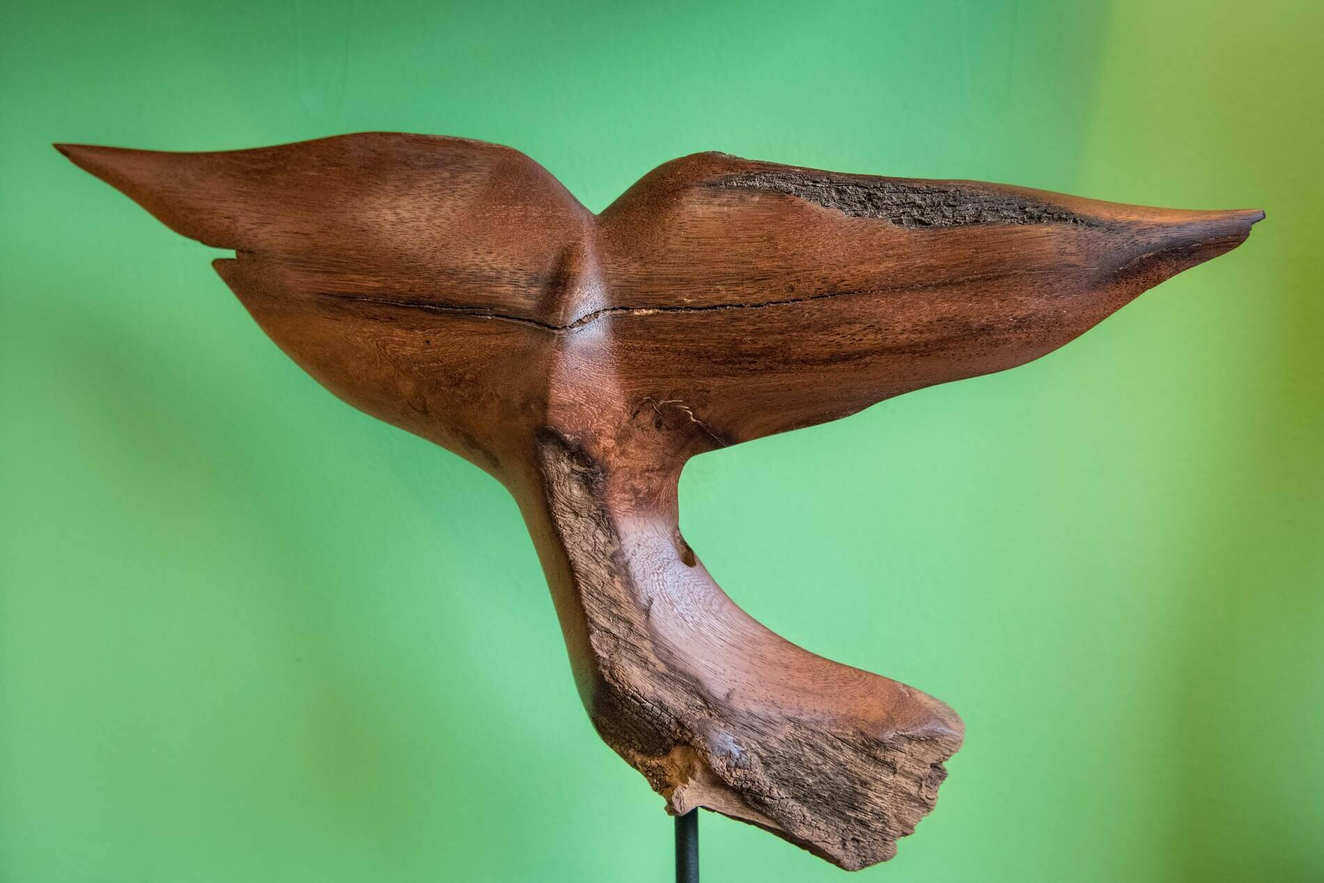 A finished whale tail wood sculpture by Boniface of Unique Driftwood Creations.